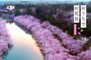 【ニュース】「DJIとおうちでお花見 2021」 にて、空撮動画・写真をリレー方式で紹介